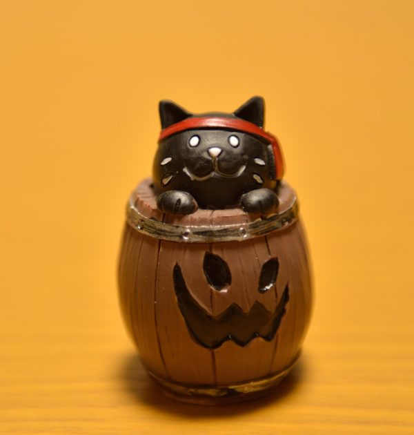 ダイソーの樽に入ったハロウィン黒猫の画像