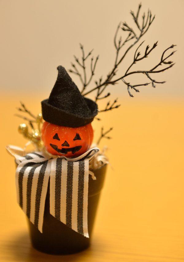 ダイソーハロウィンかぼちゃ男爵の写真