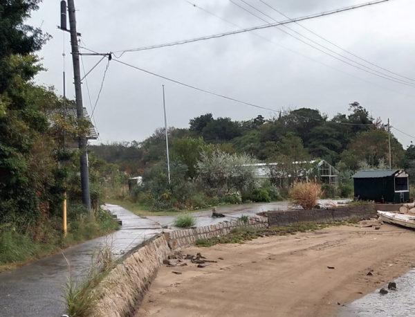 犬島くらしの植物園外観の写真